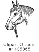 Horse Clipart #1135865 by Picsburg