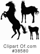 Horse Clipart #38580 by dero