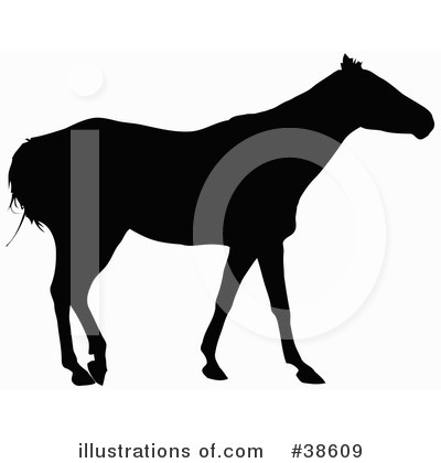 Horse Clipart #38609 by dero