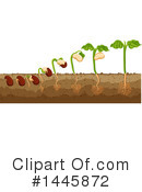 Horticulture Clipart #1445872