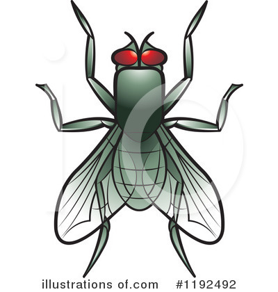 House Fly Clipart #1192492 by Lal Perera