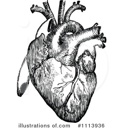 Heart Clipart #1113936 by Prawny Vintage