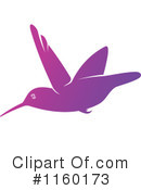 Hummingbird Clipart #1160173 by Vector Tradition SM