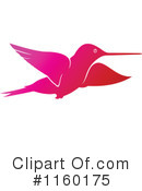 Hummingbird Clipart #1160175 by Vector Tradition SM