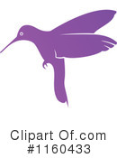 Hummingbird Clipart #1160433 by Vector Tradition SM