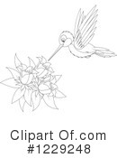 Hummingbird Clipart #1229248 by Alex Bannykh