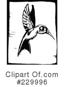 Hummingbird Clipart #229996 by xunantunich