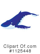 Humpback Whale Clipart #1125448