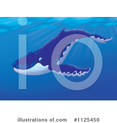 Whale Clipart #1125450 by Alex Bannykh