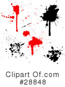 Ink Splatters Clipart #28848
