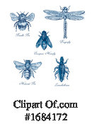 Insect Clipart #1684172 by patrimonio