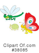 Insect Clipart #38085
