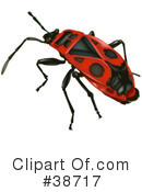 Insect Clipart #38717