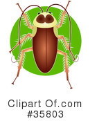 Insects Clipart #35803