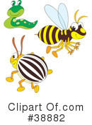 Insects Clipart #38882