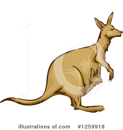 Kangaroo Clipart #1259918 by BNP Design Studio