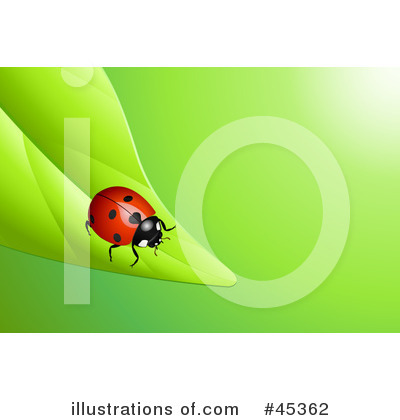 Insect Clipart #45362 by Oligo