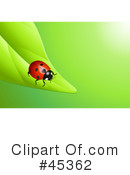Royalty-Free (RF) Ladybug Clipart Illustration #45362