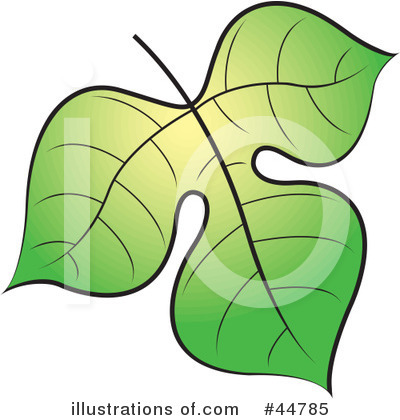 Leaf Clipart #44785 by Lal Perera