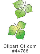 Royalty-Free (RF) leaf Clipart Illustration #44788