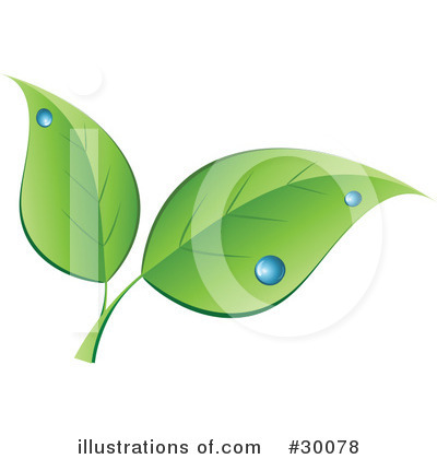 Leaves Clipart #30078 by KJ Pargeter