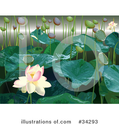 Lilies Clipart #34293 by Eugene