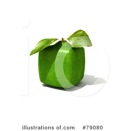 Limes Clipart #79080 by Frank Boston