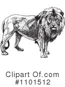Lion Clipart #1101512 by BestVector