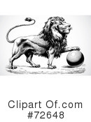 Lion Clipart #72648 by BestVector
