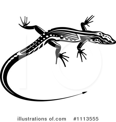 Lizard Clipart #1113555 by Vector Tradition SM