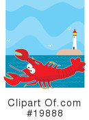 Lobster Clipart #19888