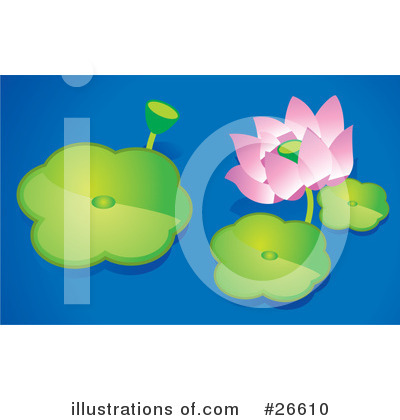 Lilies Clipart #26610 by NoahsKnight