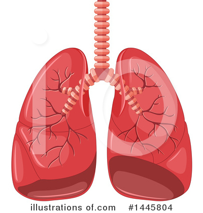 Royalty-Free (RF) Lungs Clipart Illustration by Graphics RF - Stock Sample #1445804