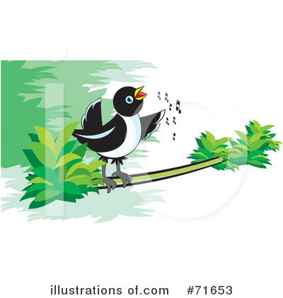 Magpie Clipart #71653 by Lal Perera
