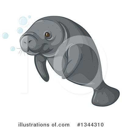 Manatee Clipart #1344310 by Graphics RF