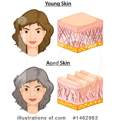 Aging Clipart #1462963 by Graphics RF