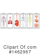 Medical Clipart #1462967 by Graphics RF