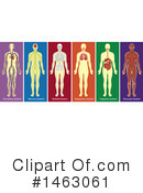 Medical Clipart #1463061 by Graphics RF