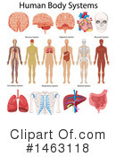 Medical Clipart #1463118 by Graphics RF