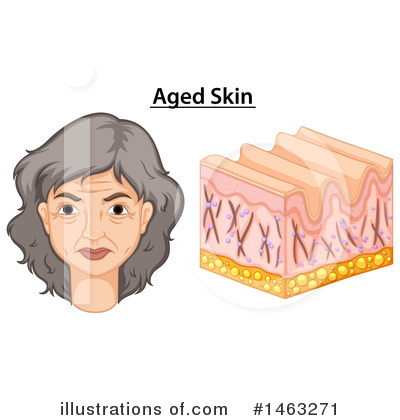 Aging Clipart #1463271 by Graphics RF