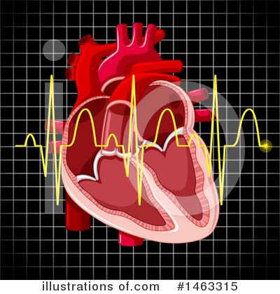 Human Heart Clipart #1463315 by Graphics RF