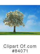 Money Tree Clipart #84071