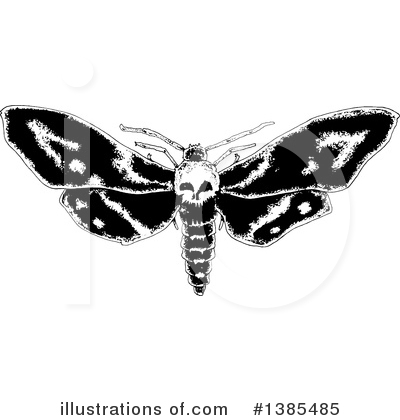 Moths Clipart #1385485 by lineartestpilot
