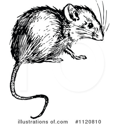 Mouse Clipart #1120810 by Prawny Vintage
