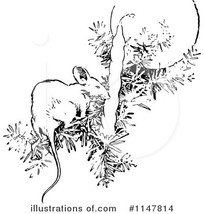 Mouse Clipart #1147814 by Prawny Vintage