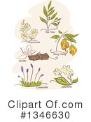 Naturopathic Clipart #1346630 by BNP Design Studio