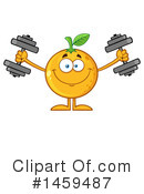 Navel Orange Clipart #1459487 by Hit Toon