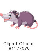 Royalty-Free (RF) opossum Clipart Illustration #1177370