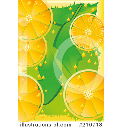 Oranges Clipart #210713 by MilsiArt