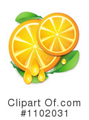 Royalty-Free (RF) Oranges Clipart Illustration #1102031
